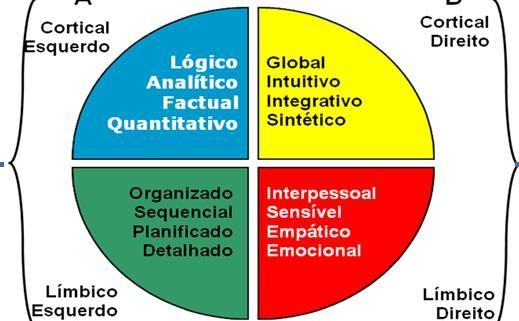 modelo de preferencias cerebrales